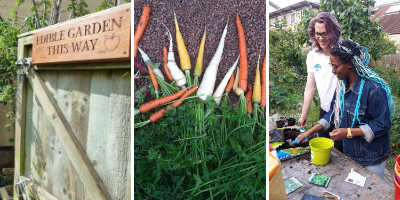 Get involved in our community gardens and growing spaces