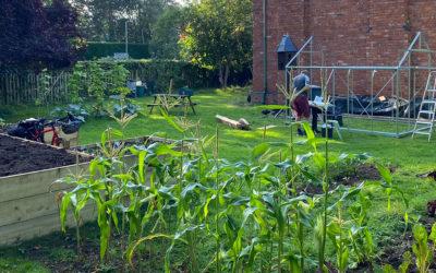 Enjoy our New Park Garden